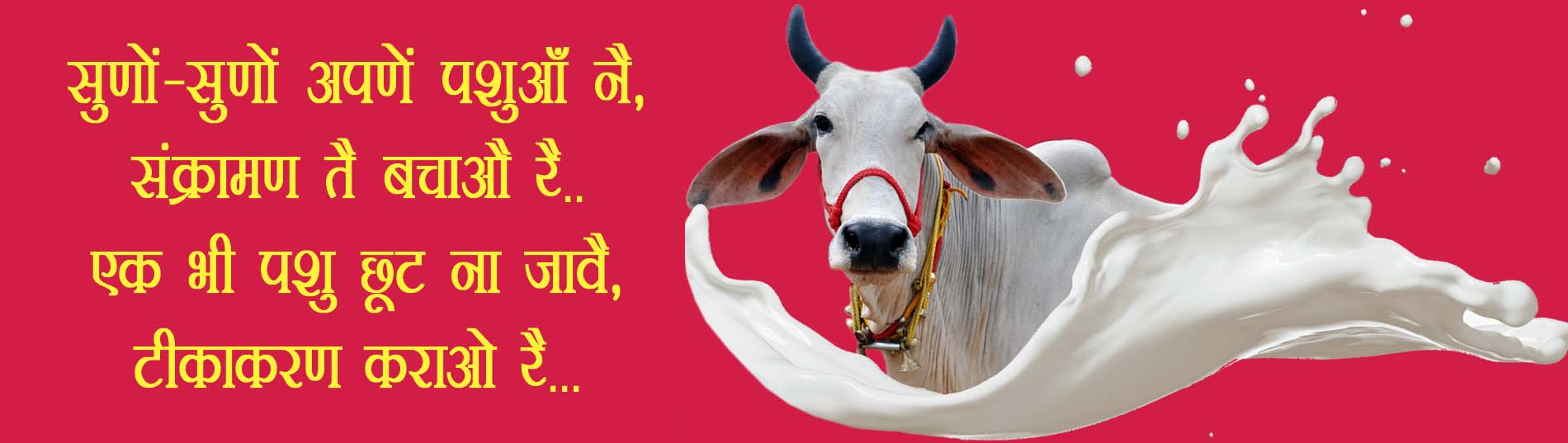 Home | Department of Animal Husbandry & Dairying, Government